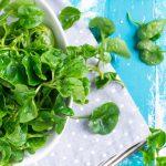 Řeřicha: drobná bylina plná vitamínů a minerálů